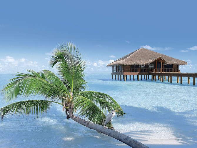 Medhufushi Island Resort-januari 2020